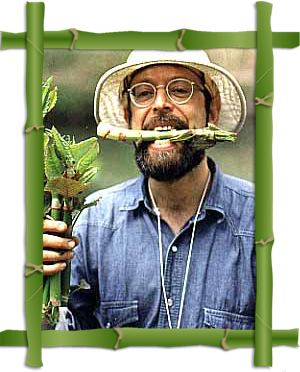 """Free Public Lecture: Wild Foods of Late Winter – Presented by """"Wildman"""" Steve Brill and Violet Brill @ Friends Meeting House   New York   United States"""